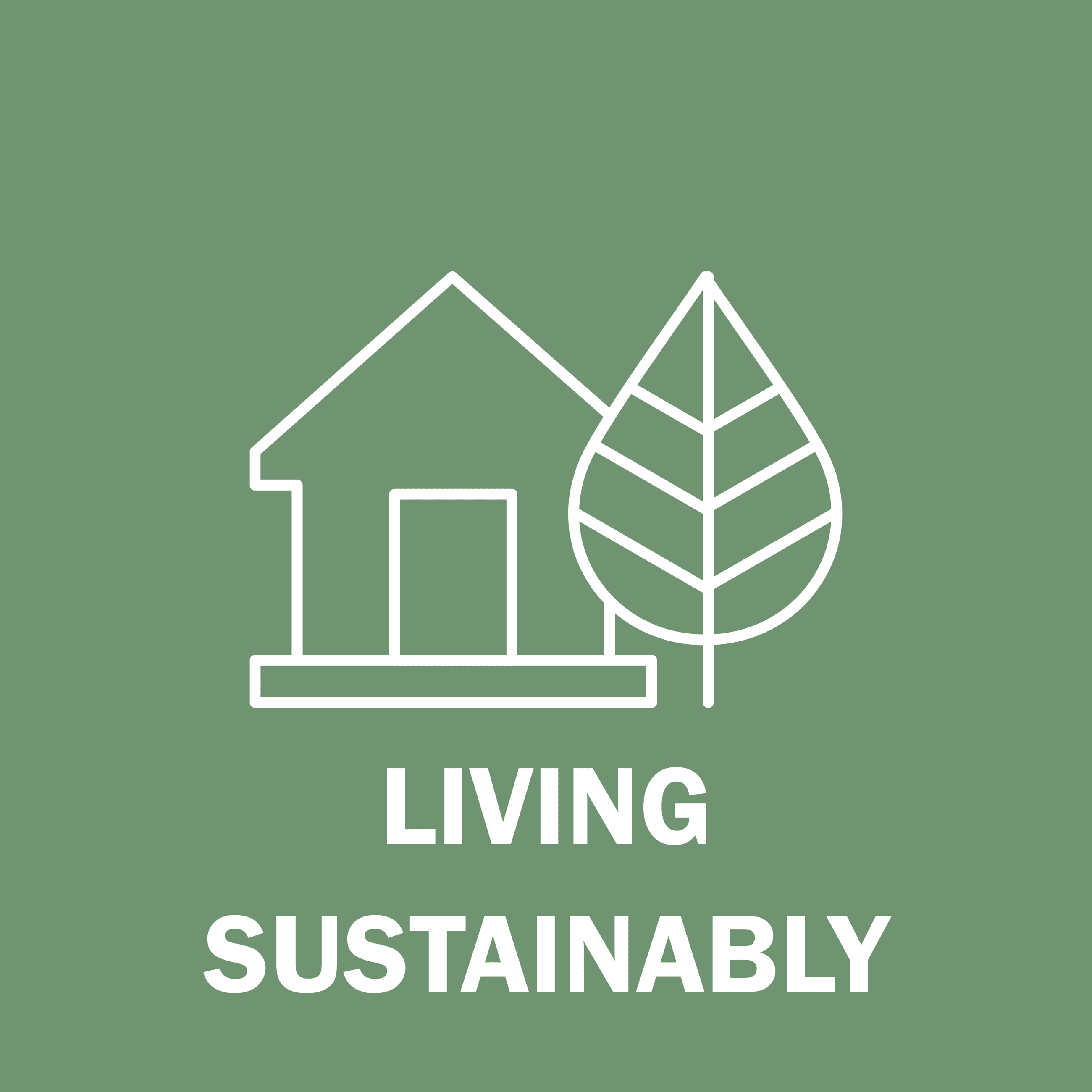 Living Sustainably Button
