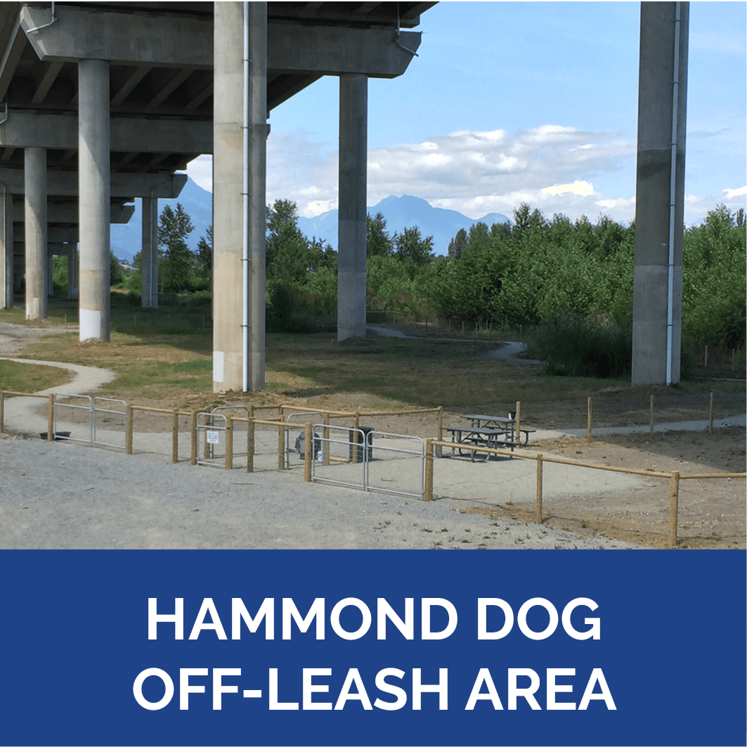 Dog Park Hammond Dog Off-Leash Area