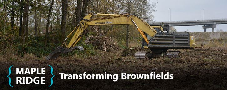 Brownfield Revitalization Incentive Programs